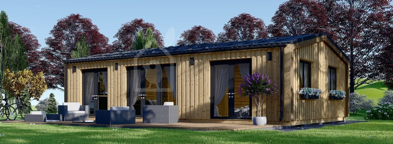 Blockbohlenhaus SELENE (Isoliert, 44 mm + Holzverschalung), 63 m² visualization 1